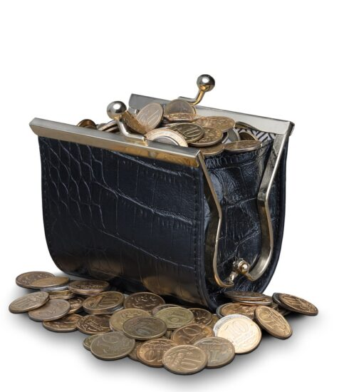 Coins Purse Wallet Money Currency  - ds_30 / Pixabay