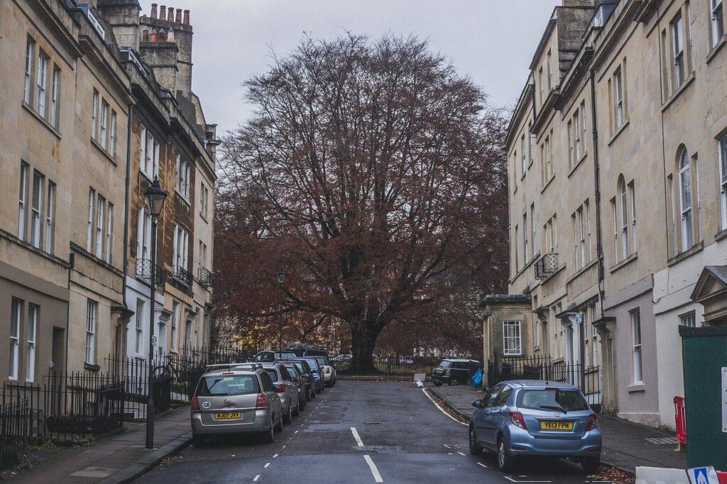 Tree Hill Street Way Road  - eduardovieiraphoto / Pixabay